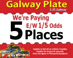 5Place535Galway